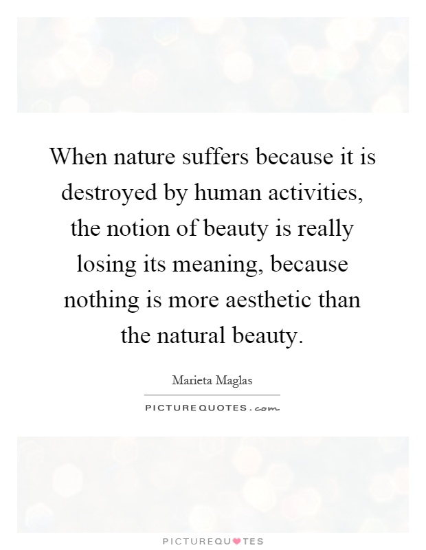 When nature suffers because it is destroyed by human activities, the notion of beauty is really losing its meaning, because nothing is more aesthetic than the natural beauty Picture Quote #1