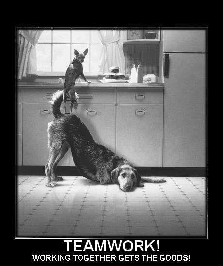 Teamwork! Working together gets the goods! Picture Quote #1