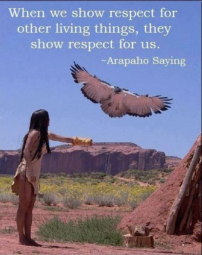 When we show respect for other living things, they show respect for us Picture Quote #1