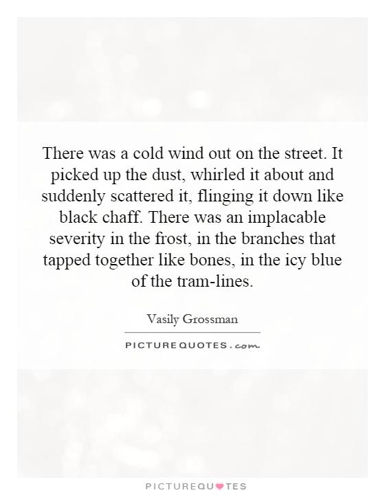 There was a cold wind out on the street. It picked up the dust, whirled it about and suddenly scattered it, flinging it down like black chaff. There was an implacable severity in the frost, in the branches that tapped together like bones, in the icy blue of the tram-lines Picture Quote #1