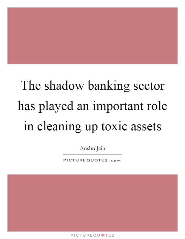 The shadow banking sector has played an important role in cleaning up toxic assets Picture Quote #1