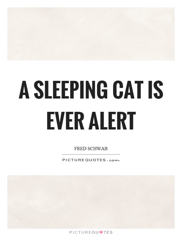 A sleeping cat is ever alert Picture Quote #1