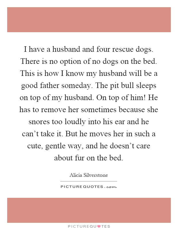 I have a husband and four rescue dogs. There is no option of no dogs on the bed. This is how I know my husband will be a good father someday. The pit bull sleeps on top of my husband. On top of him! He has to remove her sometimes because she snores too loudly into his ear and he can't take it. But he moves her in such a cute, gentle way, and he doesn't care about fur on the bed Picture Quote #1