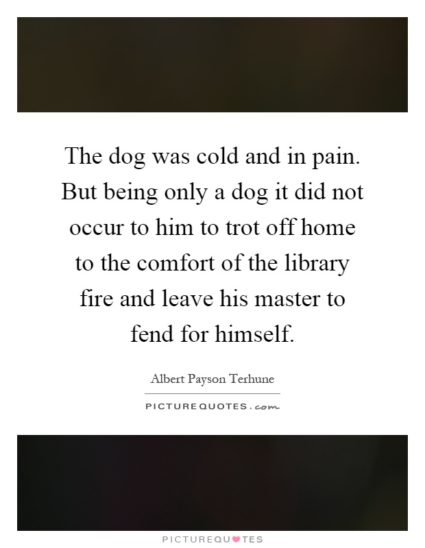 The dog was cold and in pain. But being only a dog it did not occur to him to trot off home to the comfort of the library fire and leave his master to fend for himself Picture Quote #1