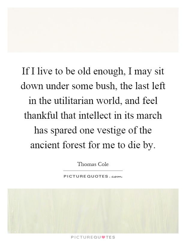 If I live to be old enough, I may sit down under some bush, the last left in the utilitarian world, and feel thankful that intellect in its march has spared one vestige of the ancient forest for me to die by Picture Quote #1