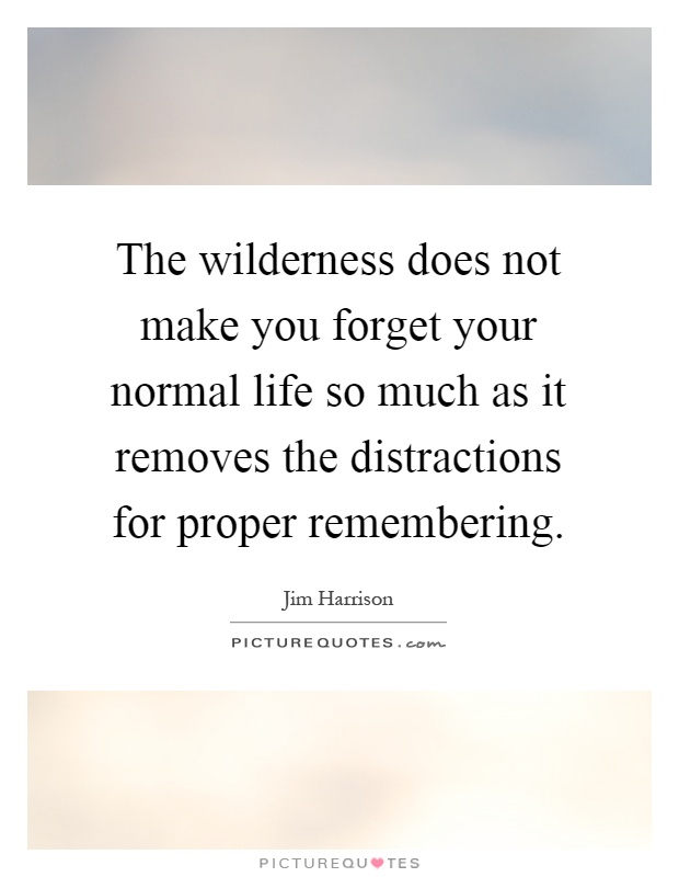 The wilderness does not make you forget your normal life so much as it removes the distractions for proper remembering Picture Quote #1