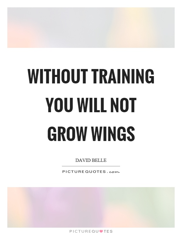 Without training you will not grow wings Picture Quote #1