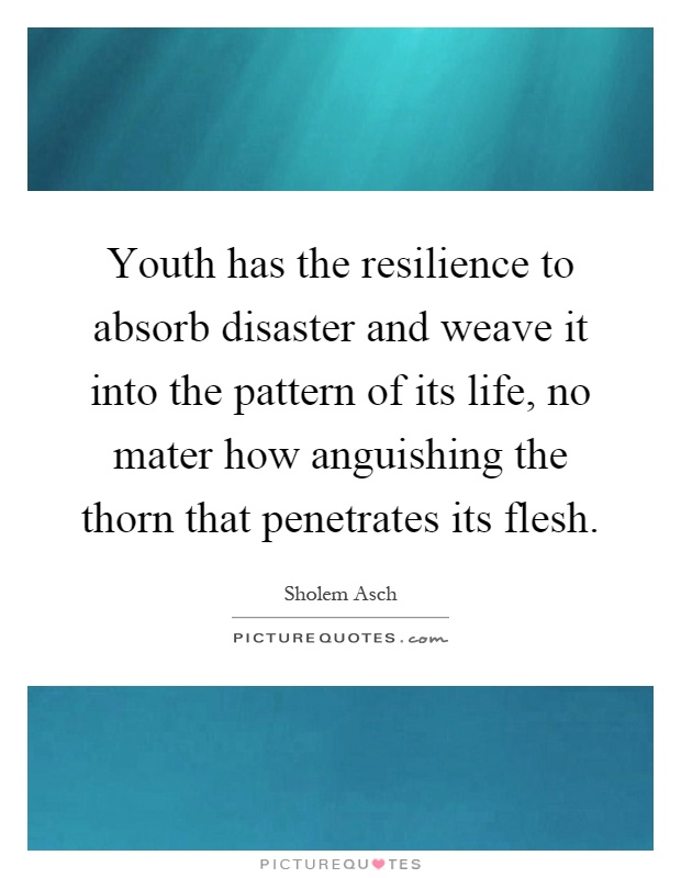 Youth has the resilience to absorb disaster and weave it into the pattern of its life, no mater how anguishing the thorn that penetrates its flesh Picture Quote #1