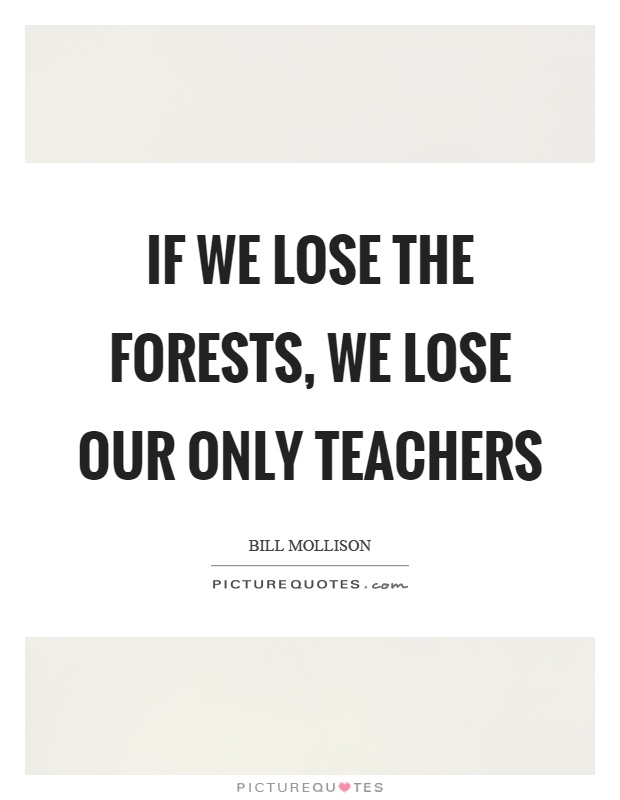 If we lose the forests, we lose our only teachers Picture Quote #1