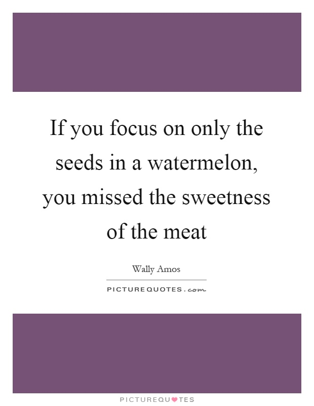 If you focus on only the seeds in a watermelon, you missed the sweetness of the meat Picture Quote #1