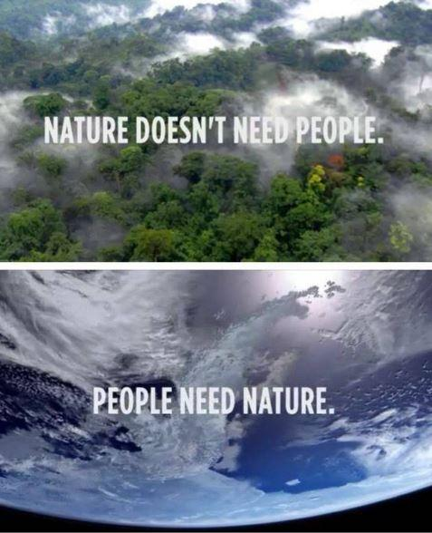 Nature doesn't need people. People need nature Picture Quote #1