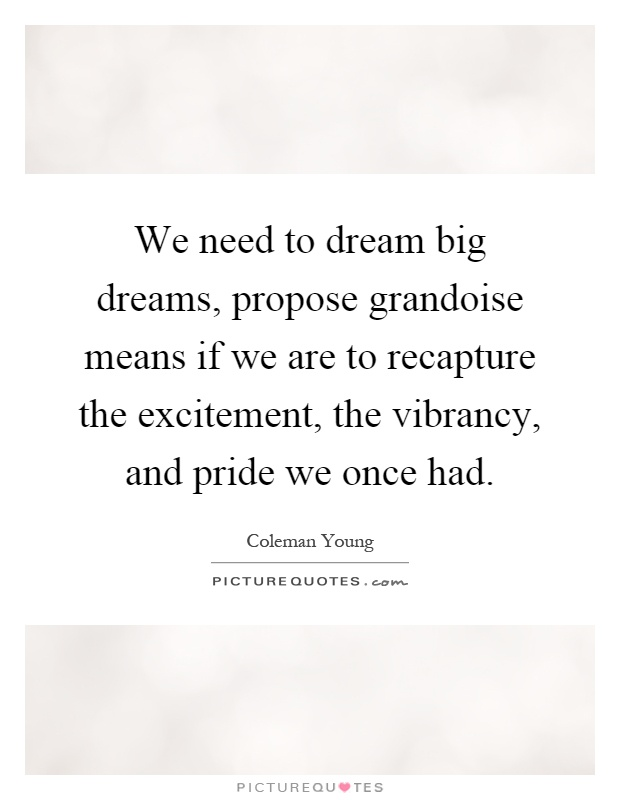 We need to dream big dreams, propose grandoise means if we are to recapture the excitement, the vibrancy, and pride we once had Picture Quote #1