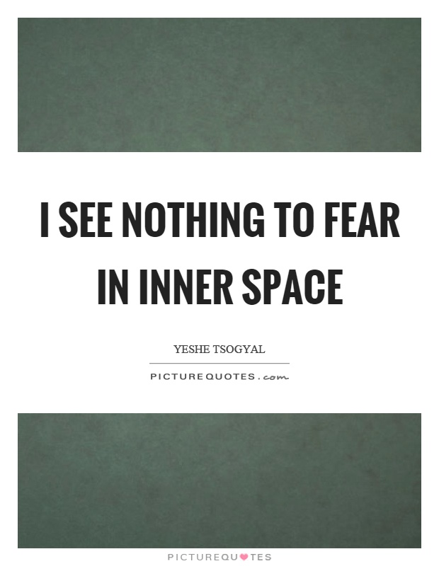 I see nothing to fear in inner space Picture Quote #1