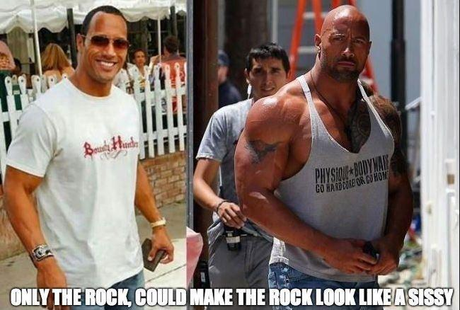 Only The Rock could make The Rock look like a sissy Picture Quote #1