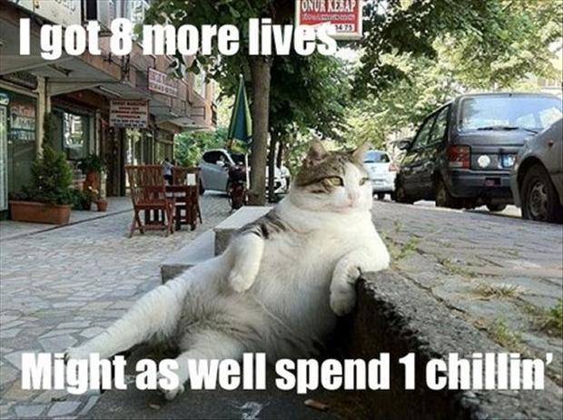 I got 8 more lives, might as well spend 1 chillin' Picture Quote #1