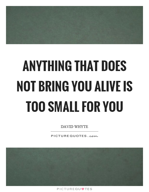 Anything that does not bring you alive is too small for you Picture Quote #1