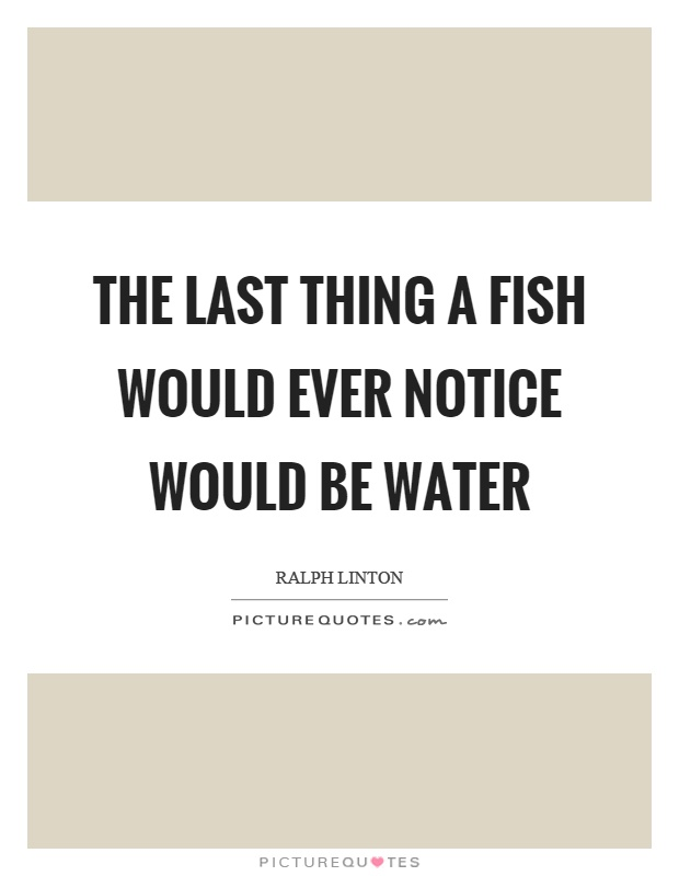 The last thing a fish would ever notice would be water Picture Quote #1