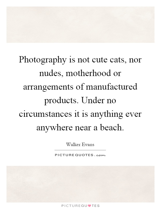 Photography is not cute cats, nor nudes, motherhood or arrangements of manufactured products. Under no circumstances it is anything ever anywhere near a beach Picture Quote #1
