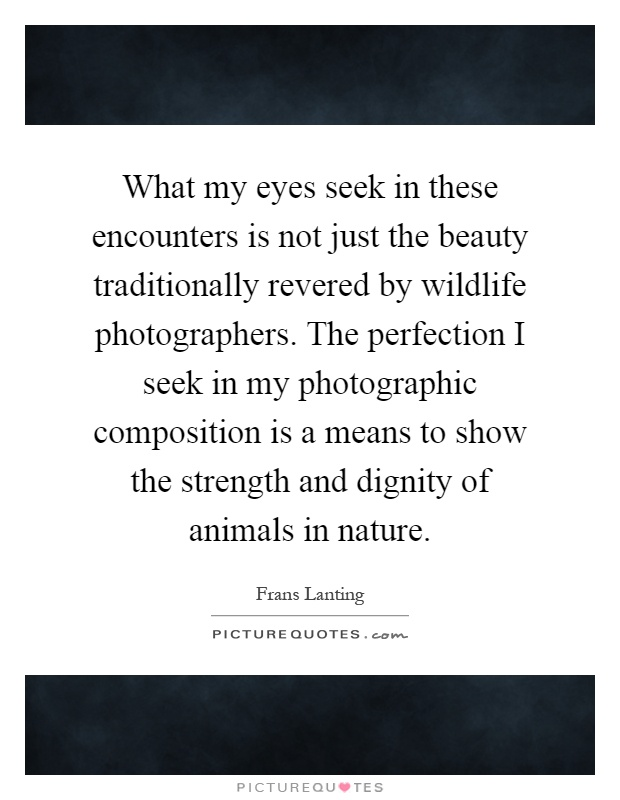 What my eyes seek in these encounters is not just the beauty traditionally revered by wildlife photographers. The perfection I seek in my photographic composition is a means to show the strength and dignity of animals in nature Picture Quote #1
