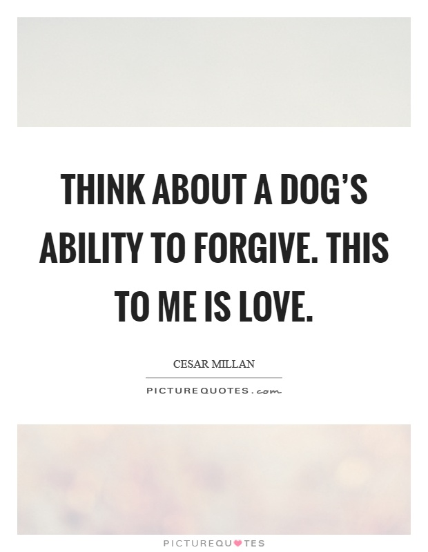 Think about a dog's ability to forgive. This to me is love Picture Quote #1