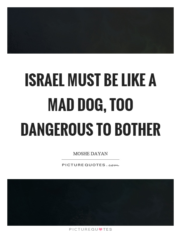 Israel must be like a mad dog, too dangerous to bother Picture Quote #1