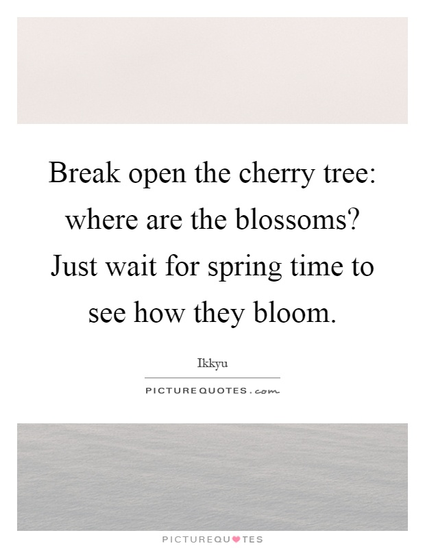 Break open the cherry tree: where are the blossoms? Just wait for spring time to see how they bloom Picture Quote #1