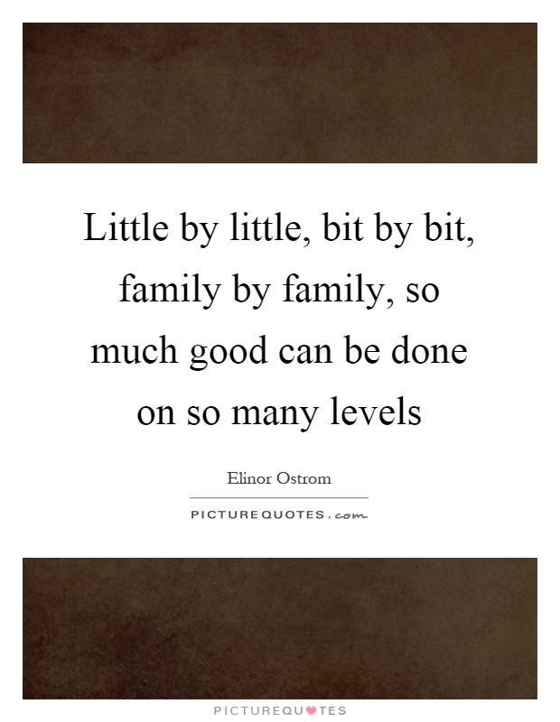Little by little, bit by bit, family by family, so much good can be done on so many levels Picture Quote #1