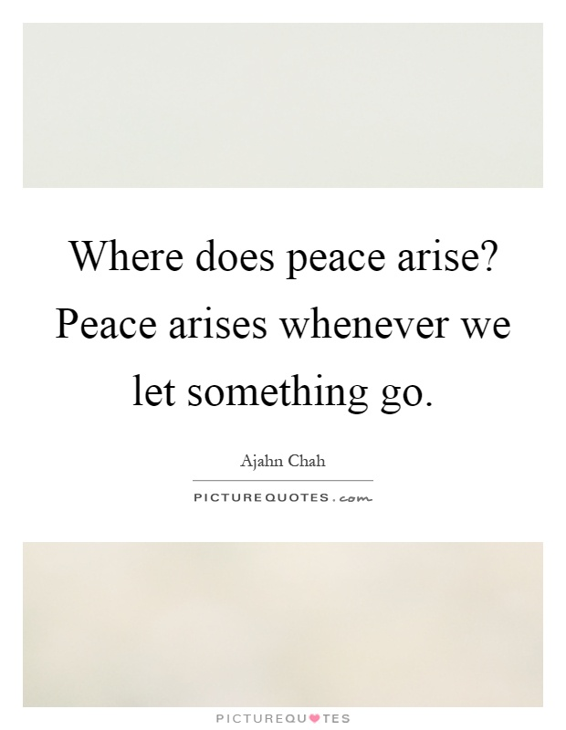 Where does peace arise? Peace arises whenever we let something go Picture Quote #1