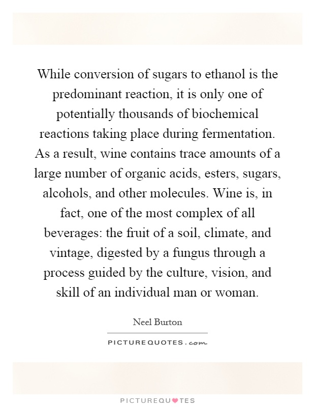 While conversion of sugars to ethanol is the predominant reaction, it is only one of potentially thousands of biochemical reactions taking place during fermentation. As a result, wine contains trace amounts of a large number of organic acids, esters, sugars, alcohols, and other molecules. Wine is, in fact, one of the most complex of all beverages: the fruit of a soil, climate, and vintage, digested by a fungus through a process guided by the culture, vision, and skill of an individual man or woman Picture Quote #1