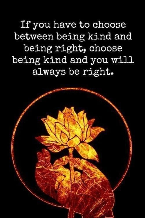 If you have to choose between being kind and being right, choose being kind and you will always be right Picture Quote #1