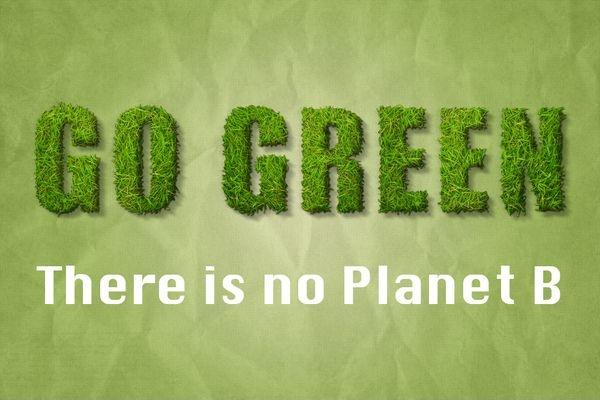 Go green. There is no Planet B Picture Quote #1