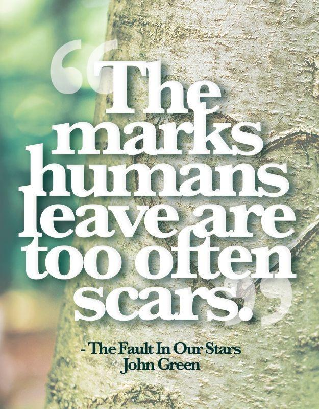 The marks humans leave are too often scars Picture Quote #1