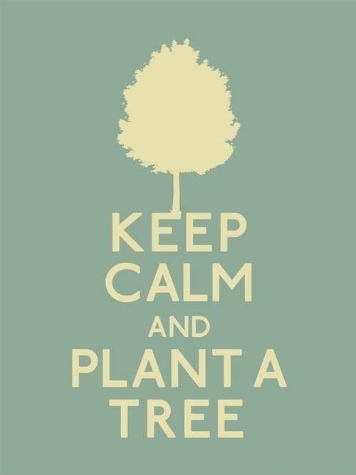 Keep calm and plant a tree Picture Quote #1