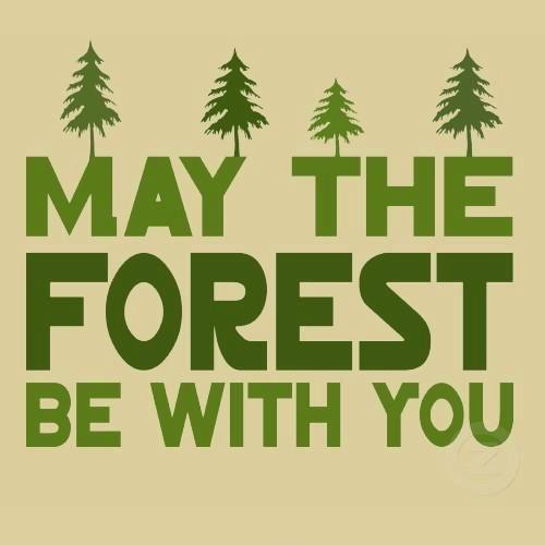 May the forest be with you Picture Quote #1