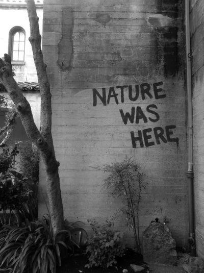 Nature was here Picture Quote #1