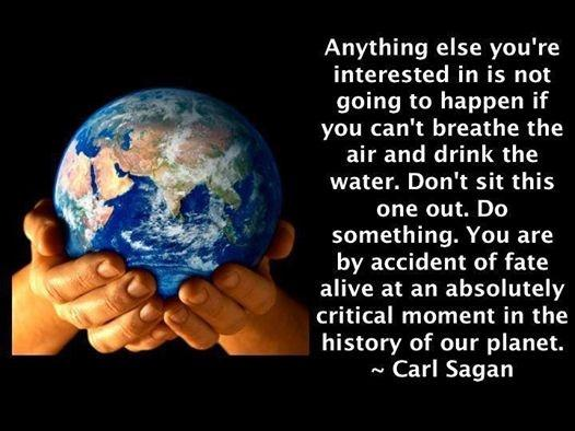 Anything else you're interested in is not going to happen if you can't breathe the air and drink the water. Don't sit this one out. Do something. You are by accident of fate alive at an absolutely critical moment in the history of the planet Picture Quote #1