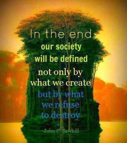In the end our society will be defined not only by what we create but by what we refuse to destroy Picture Quote #1