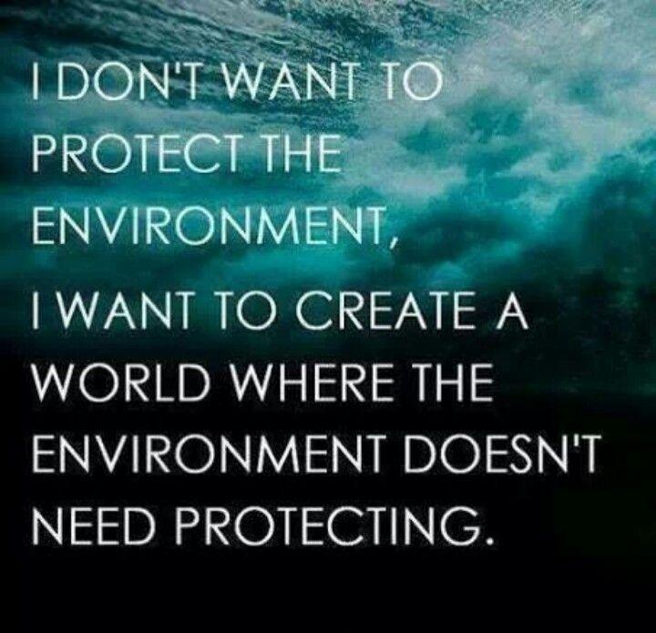 I don't want to protect the environment, I want to create a world where the environment doesn't need protecting Picture Quote #1