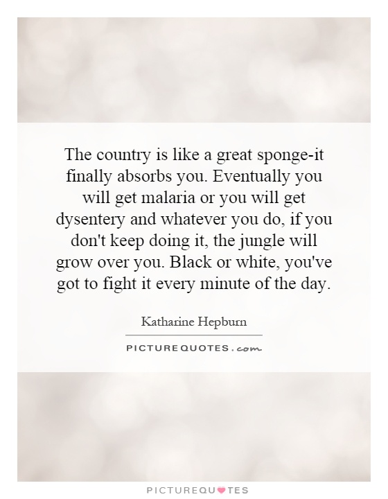 The country is like a great sponge-it finally absorbs you. Eventually you will get malaria or you will get dysentery and whatever you do, if you don't keep doing it, the jungle will grow over you. Black or white, you've got to fight it every minute of the day Picture Quote #1