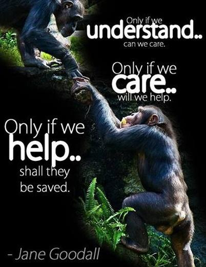 Only if we understand can we care. Only if we care will we help. Only if we help shall they be saved Picture Quote #1