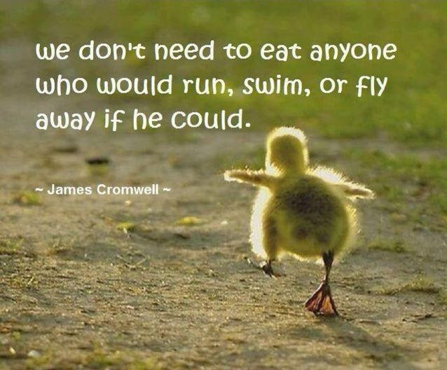 We don't need to eat anyone who would run, swim, or fly away if he could Picture Quote #1