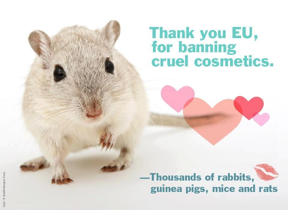 Thank you EU, for banning cruel cosmetics Picture Quote #1