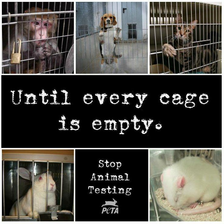 Until every cage is empty. Stop animal testing Picture Quote #1