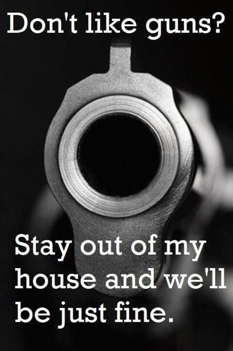 Don't like guns? Stay out of my house and we'll be just fine Picture Quote #1