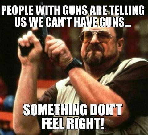 People with guns are telling us we can't have guns. Something don't feel right! Picture Quote #1