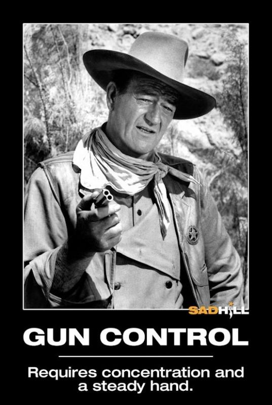 Gun control. Requires concentration and a steady hand Picture Quote #1