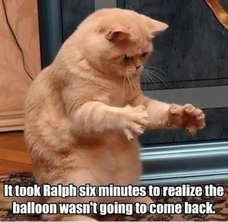 It too Ralph six minutes to realize the balloon wasn't going to come back Picture Quote #1