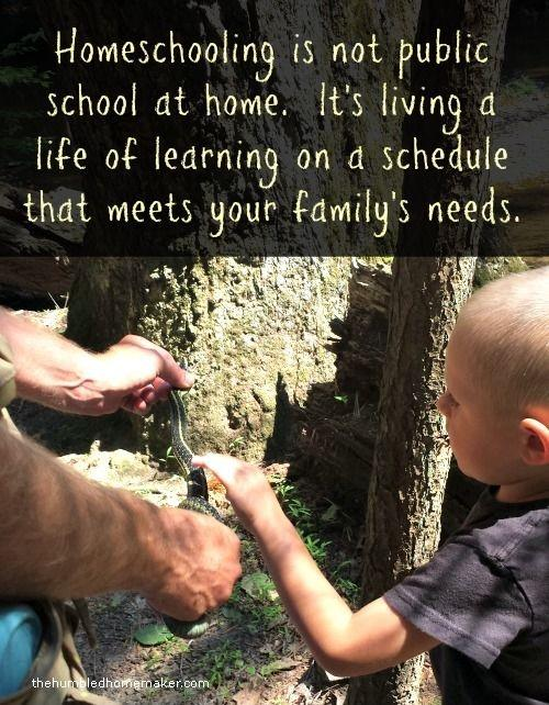 Homeschooling is not public school at home. It's living a life of learning on a schedule that meets your family's needs Picture Quote #1