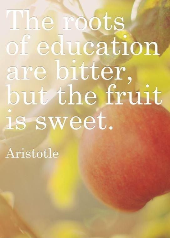 The roots of education are bitter, but the fruits are sweet Picture Quote #1