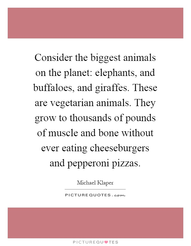 Consider the biggest animals on the planet: elephants, and buffaloes, and giraffes. These are vegetarian animals. They grow to thousands of pounds of muscle and bone without ever eating cheeseburgers and pepperoni pizzas Picture Quote #1